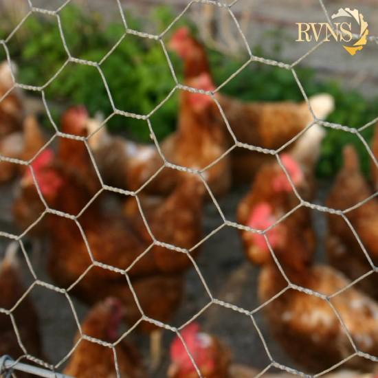 وریا نوین صنعت رهام-خرید توری مرغی-قیمت توری مرغی-لیست قیمت توری مرغی-قیمت روز توری مرغی-خرید آنلاین توری-لیست قیمت روز توری